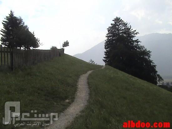 سواق ليموزين وقصصه مع الناس ( دولة سويسرا وهايدي ) الذهاب الى بيت هايدي سيرا على الأقدام بدون سيارة