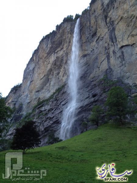 سواق ليموزين وقصصه مع الناس ( دولة سويسرا وهايدي ) مناظر جميلة من سويسرا 1