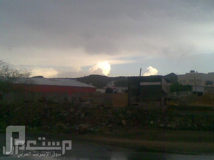 مناظر من تصويري لمحافظة الطائف ومنطقة الشفا منظر من السحب طريق السيل -الطايف1