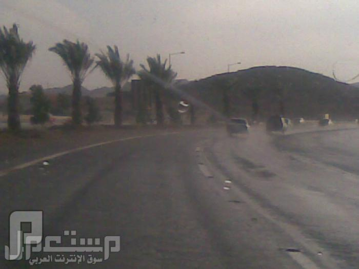 مناظر من تصويري لمحافظة الطائف ومنطقة الشفا امطار وانا في طريقي لداخل الطايف-طريق السيل4