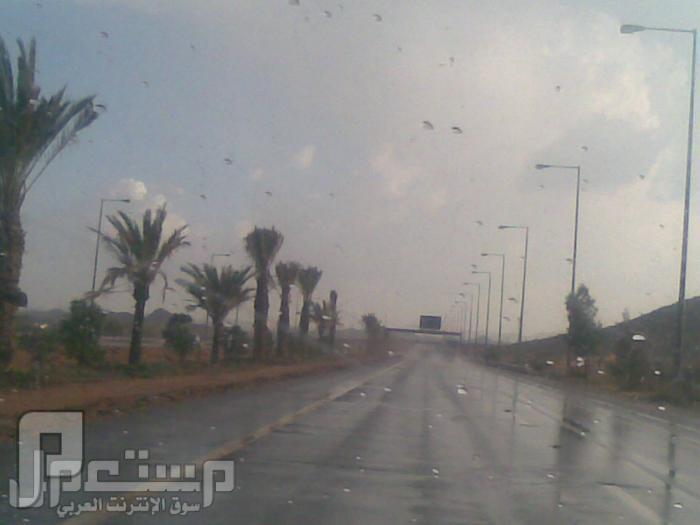 مناظر من تصويري لمحافظة الطائف ومنطقة الشفا امطار وانا في طريقي لداخل الطايف-طريق السيل3