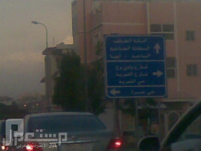 مناظر من تصويري لمحافظة الطائف ومنطقة الشفا مناظر من داخل الطايف5
