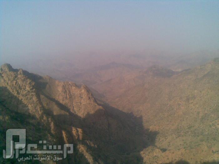 مناظر من تصويري لمحافظة الطائف ومنطقة الشفا مناظر من الشفا2