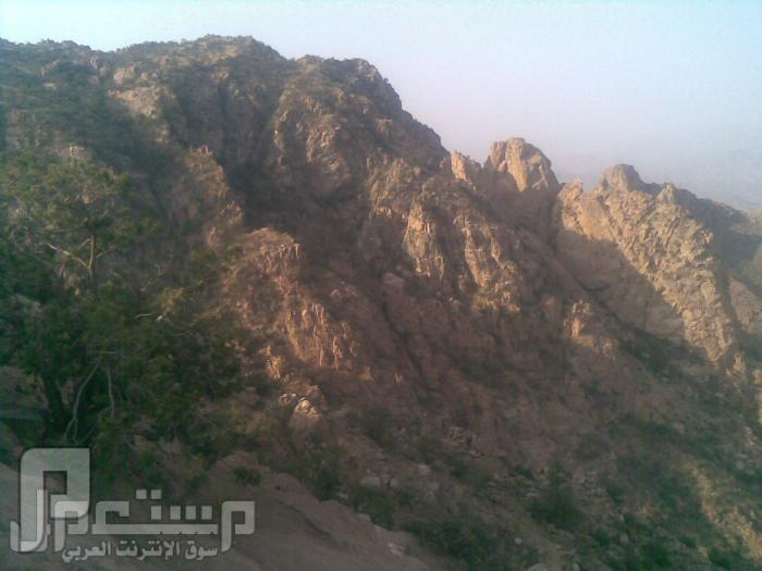 مناظر من تصويري لمحافظة الطائف ومنطقة الشفا مناظر من الشفا3