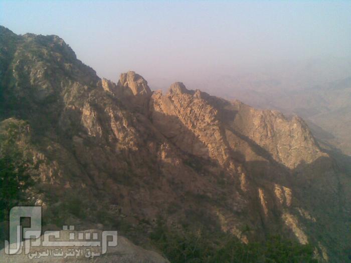 مناظر من تصويري لمحافظة الطائف ومنطقة الشفا مناظر من الشفا5