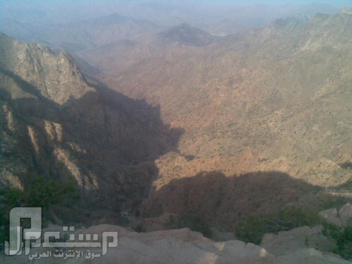 مناظر من تصويري لمحافظة الطائف ومنطقة الشفا مناظر من الشفا4