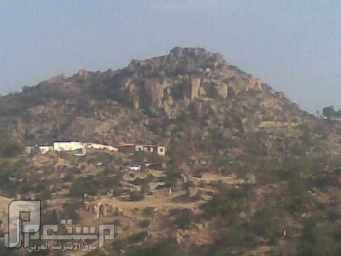 مناظر من تصويري لمحافظة الطائف ومنطقة الشفا مناظر من الشفا8