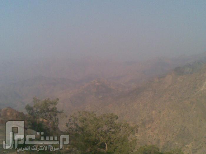 مناظر من تصويري لمحافظة الطائف ومنطقة الشفا مناظر من الشفا10