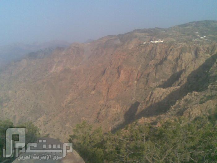 مناظر من تصويري لمحافظة الطائف ومنطقة الشفا مناظر من الشفا11