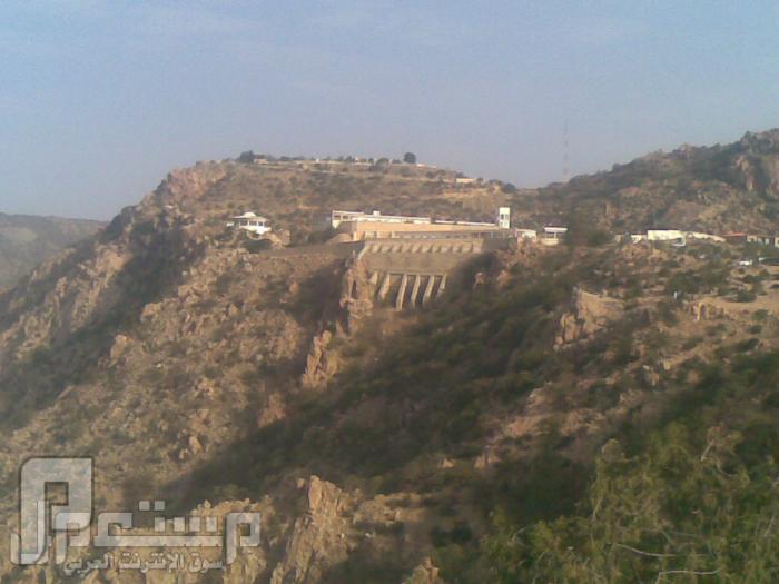 مناظر من تصويري لمحافظة الطائف ومنطقة الشفا مناظر من الشفا12