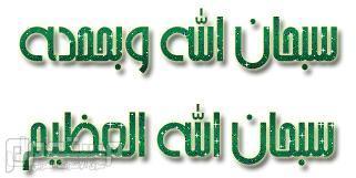الفاروق عمر بن الخطاب رضي الله عنه