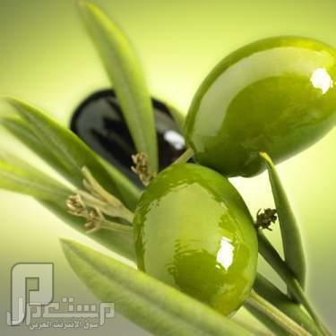 التشابه بين شكل النبتة وبين خصائصها العلاجية