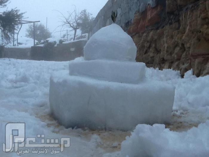 صور من فلسطين للمنخفض الثلجي الذي حل ضيفا علينا 2013