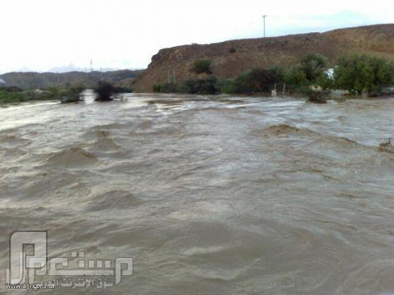 تحذير من هطول أمطار وسيول جارفة على المدينة والسواحل الغربية