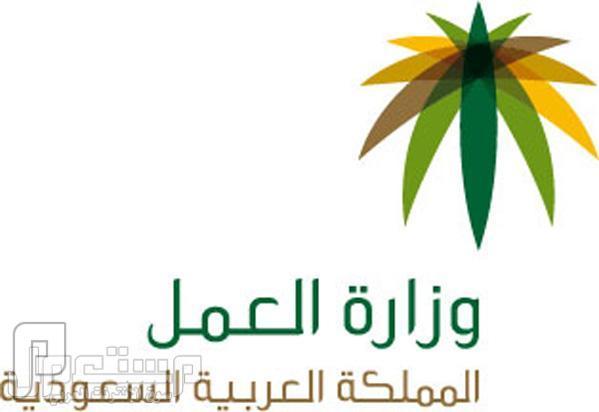 توفر 26 وظيفة في وزارة العمل بمقر الوزارة بالرياض 1434