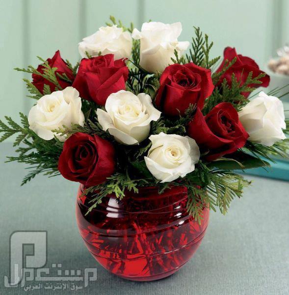 هدية مني لامهاتكم وزوجاتكم واخواتكم