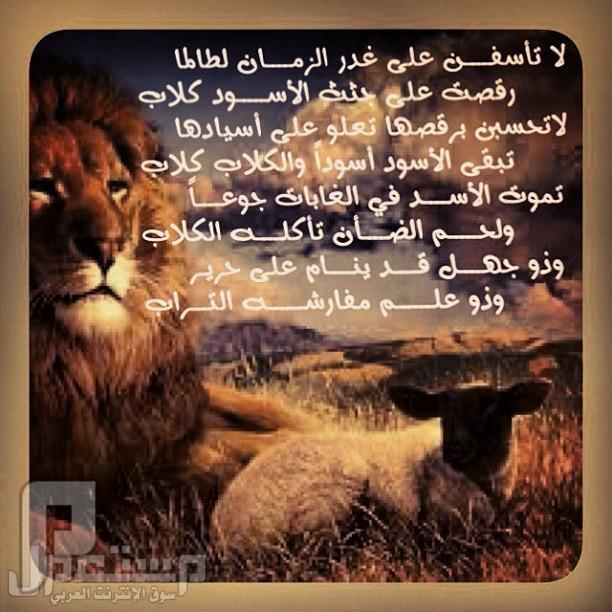 اللي عنده خبره ويساعدني، الظلم والتهميش من قبل الإدارة