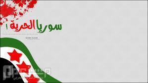 حزب الله ارتكب مجازر جماعية وأحرق الحرث والنسل