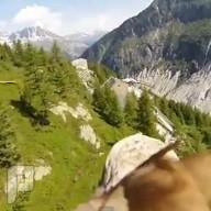 كيف ينظر النسر اثناء الطيران - كاميرا مثبته على النسر وهو يطير