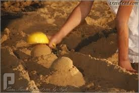 أفضل الرمال للعب الأطفال