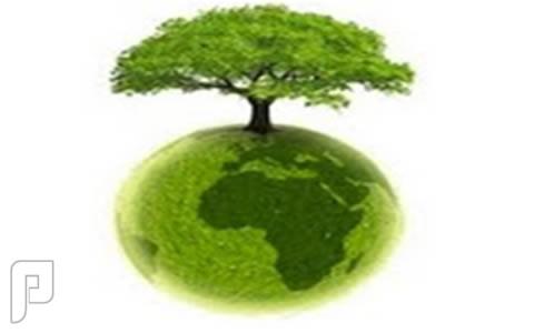 ماذا تعرف عن التنمية المستدامة ؟