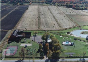 لا مانع من تحويل الأراضي الزراعية إلى سكنية