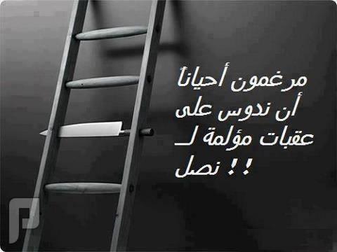 مقطع خطير لناصر الدويلة عن انقلاب مصر