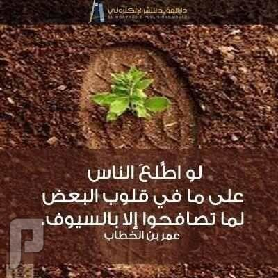 لو اطلع الناس