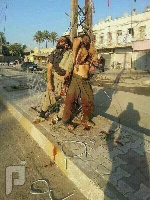 عائلة من أهل السنة في العراق تم حرقها ببغداد شباب من اهل السنة في بغداد