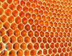 ما لا تعرفه عن العسل قبل النوم