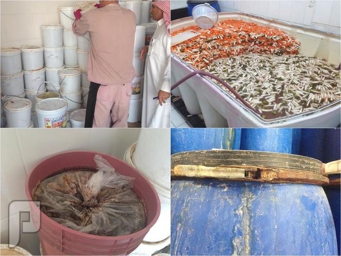 غلق معملاً في الرياض يُعد المخللات في أحواض ملوثة بالحشرات والصدأ