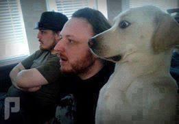 قصة ماذا فعل الكلب الذكي و الجزار عندما جاع الكلب ؟!