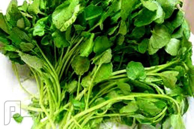 5 فوائد مدهشة للفواكه والخضروات لعلاج أمراض خطيرة • 10 فوائد تجعل الجرجير أفضل الخضروات للرجل