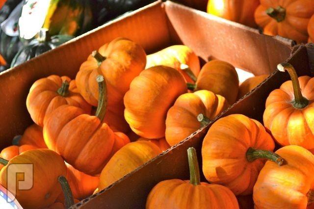 5 فوائد مدهشة للفواكه والخضروات لعلاج أمراض خطيرة فوائد لفاكهة اليقطين في الرجيم