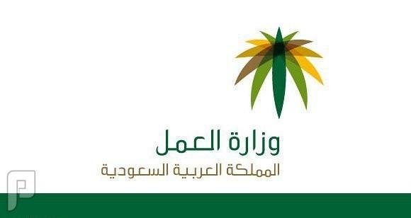 بدء التقديم على الوظائف الإدارية في بعض مناطق المملكة بوزارة العمل1435
