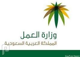 فيديو فضيحة وزارة العمل اخلعي حجابك كي تبقي بالوظيفه