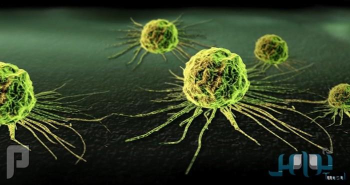 مادة طبيعية تقتل الخلايا السرطانية خلال 16 ساعة