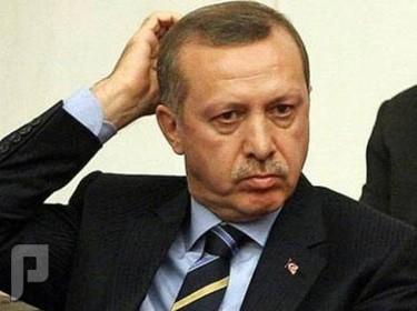 أردوغان والعرب الباحثون عن سيّد