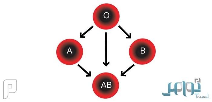 دراسة: فصيلة دمك قد تعرضك لخطر الإصابة بأمراض القلب