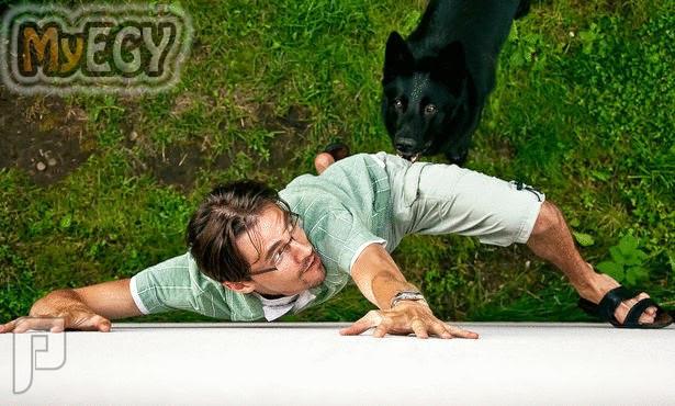 كيف تدافع عن نفسك عندما تهاجمك الحيوانات