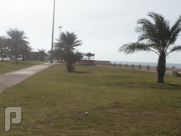 مناظر وصور من ينبع البحر منظر من كورنيش الشرم (ينبع البحر)