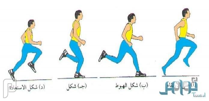 للتخلص من الوزن الزائد.. تعرف على فوائد رياضة الجري