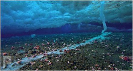هذا خلق الله ( ظواهر طبيعية غريبة ) عامود الثلج داخل الماء