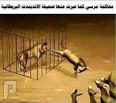 محاكمة مرسي في كاريكاتير
