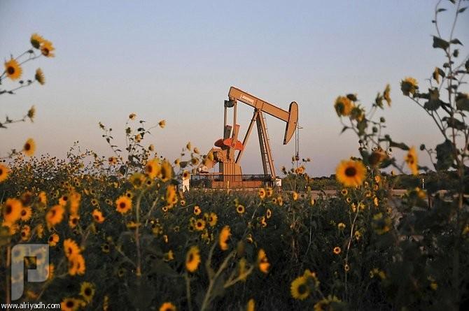 البترول بين النعيمي و اوبك
