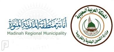 أمانة المدينة المنورة تعلن وظائف إدارية على نظام البنود و العقود 1437 وظائف ادارية شاغرة في امانة المدينة المنورة 1437