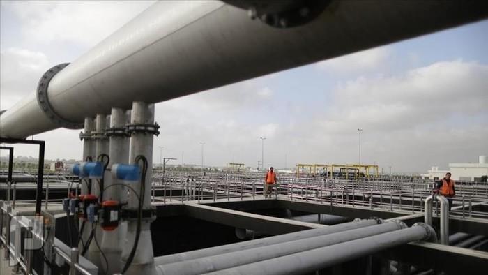 8 عوامل تعزز نجاح الرؤية السعودية بعد حقبة النفط