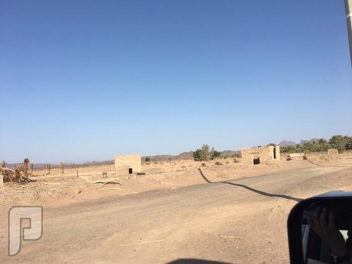 ارض زراعية عبارة عن مزرعة قديمة بمنطقة المدينة المنورة ( صك الكتروني )