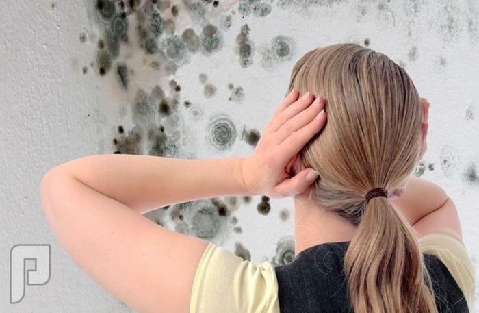 10 نصائح للتخلص من الرطوبة المزعجة في المنزل