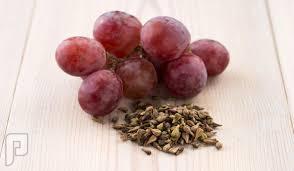 كبسولات مستخلص بذور العنب لعلاج العشى الليلي